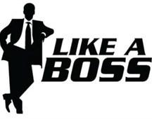 LAB (Like A Boss)